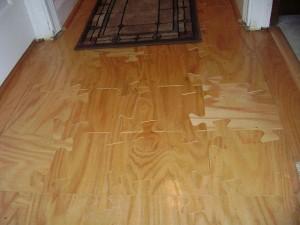 angus-floor1