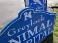 Signs for Greylock Animal Hospital